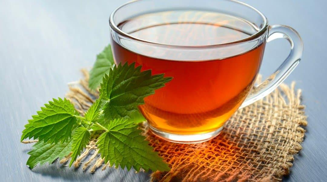 thé vert infusion
