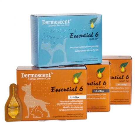 Soin pour chien et chat : Essential 6 spot-on Dermoscent