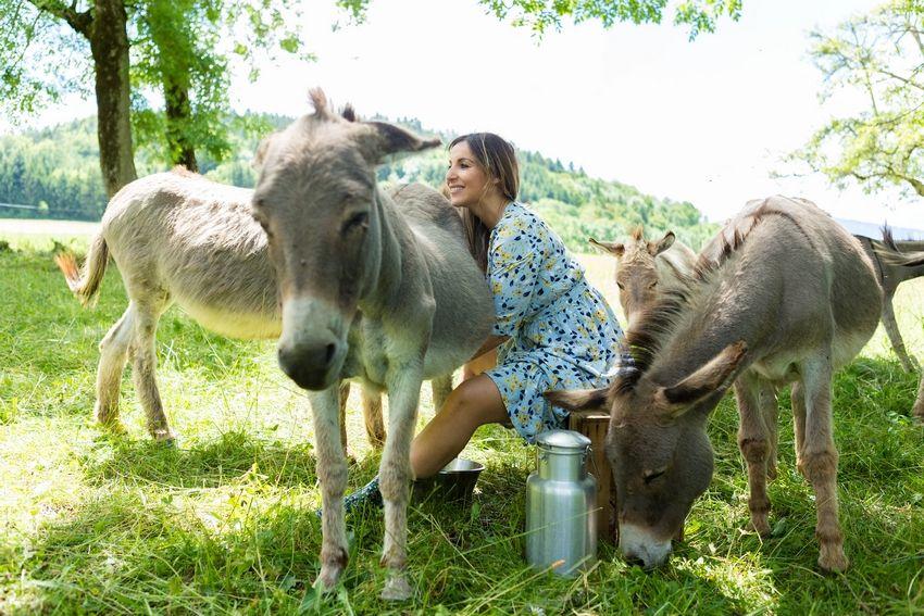 Daliane savons-soins au lait d'ânesse