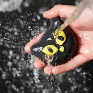 Lush : Bewitched