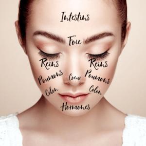 Les zones du visage en lien avec les organes du corps