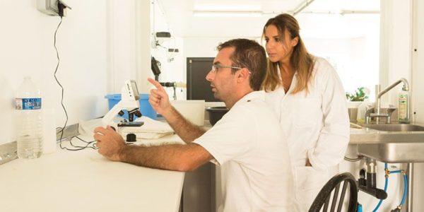Eric vérifie quotidiennement au microscope la qualité de sa  spiruline