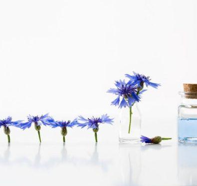 L'eau florale de bleuet, un bijou pour le contour des yeux