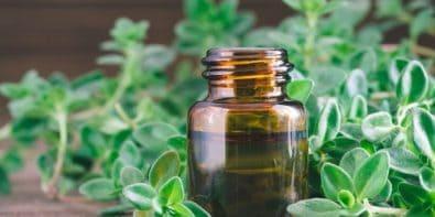 Zoom sur l'huile essentielle de ravintsara