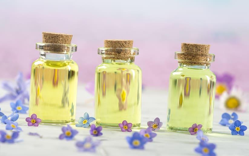 Huile de bourrache : les bienfaits pour notre peau