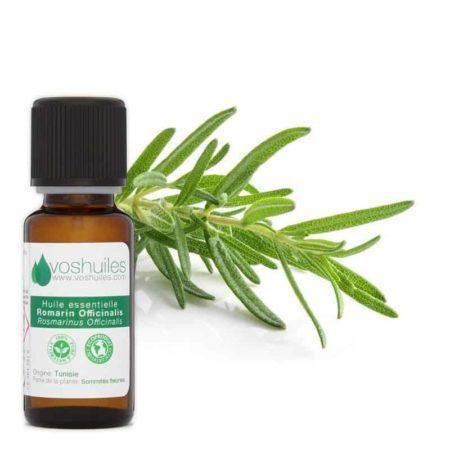 huile essentielle de romarin offcinalis