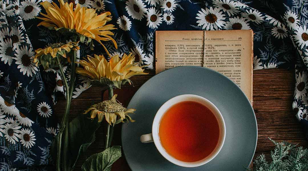 Tisane pissenlit pour detox foie