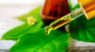 Huile essentielle contre les poux : dites bye-bye à ce fléau, de façon 100% naturelles !